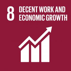 SDG Goal 8 on burgundy background